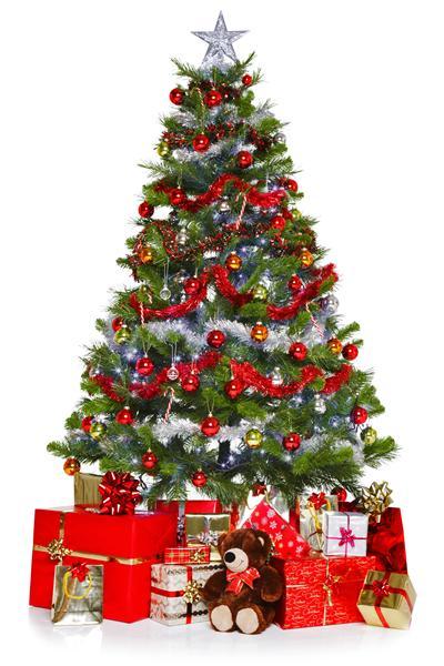arbol de navidad.jpg