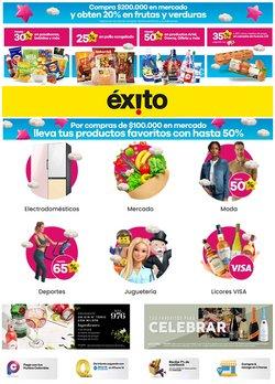 Catálogo Éxito en Cúcuta ( Publicado ayer )