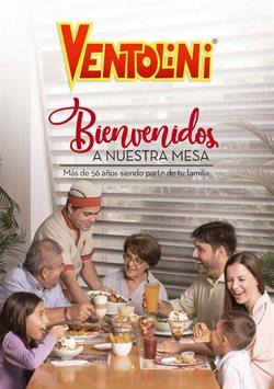Catálogo Ventolini ( Más de un mes )