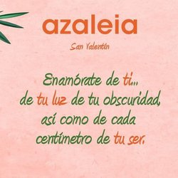 Catálogo Azaleia ( Caducado )
