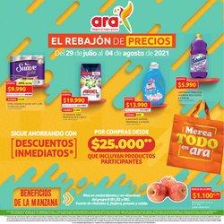 Catálogo Ara ( Publicado ayer)