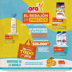 Catálogo Ara ( Publicado hoy)
