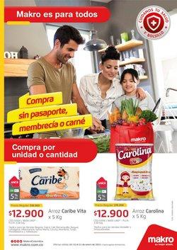 Catálogo Makro en Villavicencio ( Vence mañana )