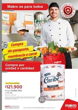 Ofertas de Supermercados en el catálogo de Makro en Villavicencio ( 3 días más )