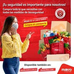 Catálogo Makro ( Vence mañana)