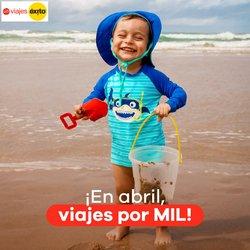 Ofertas de Viajes en el catálogo de Viajes Éxito en Pereira ( 8 días más )