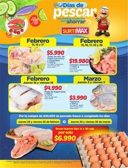 Catálogo Surtimax en Soacha ( Más de un mes )