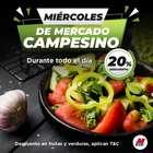 Catálogo MegaTiendas ( Caducado )