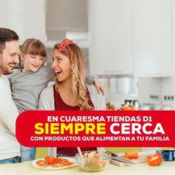 Ofertas de Supermercados en el catálogo de Tiendas D1 en Girón ( Caduca hoy )