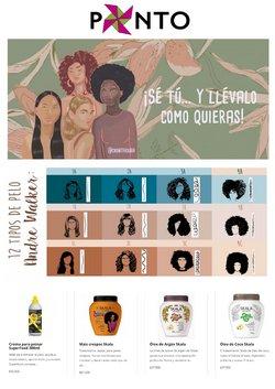 Catálogo Punto Brasileiro ( Caducado )