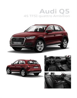 Ofertas de Coche, moto y repuestos en el catálogo de Audi ( Más de un mes)