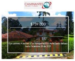 Ofertas de Viajes en el catálogo de Caminantes ( Más de un mes)