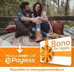Catálogo Payless ( Más de un mes )