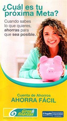 Catálogo Giros y Finanzas en Santa Marta ( 23 días más )