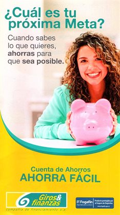 Catálogo Giros y Finanzas ( Vencido)
