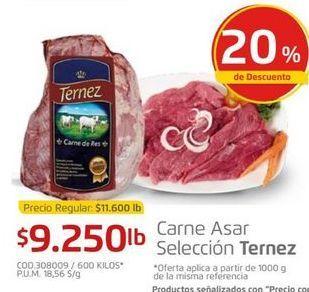 Oferta de Carne Ternez por $9250
