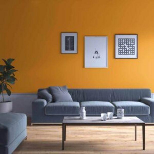 Oferta de Pintura 1-7-6 Interior por $73989