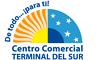 Logo Terminal del Sur