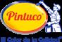 Logo Pintuco